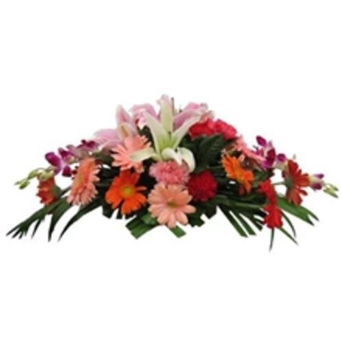 胡兰花台花