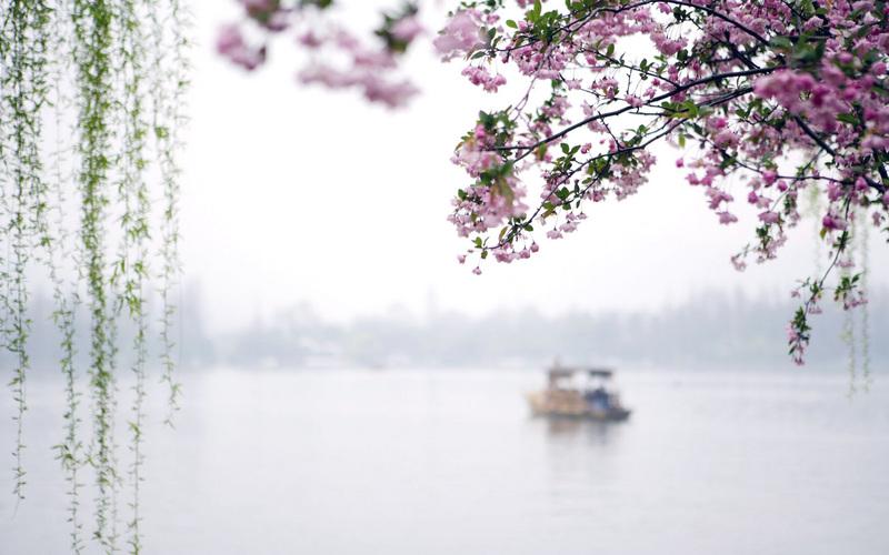 上海网站建设公司网迎客,网站设计技巧分享!