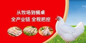 【河北玖兴集团】涿州开发区工厂招聘信息