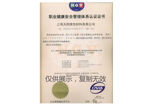 T-28001 职业健康管理体系认证证书