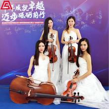 西洋乐器-小提琴表演