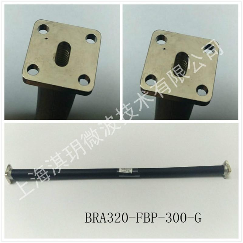 BRA320-FBP-300-G.jpg