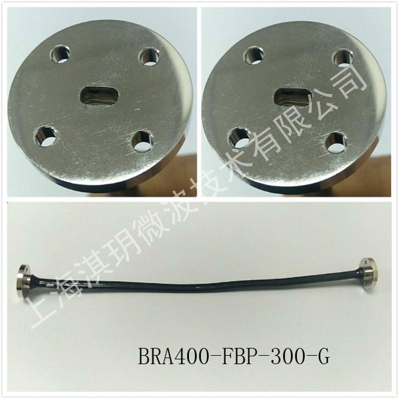 BRA400-FBP-300-G.jpg