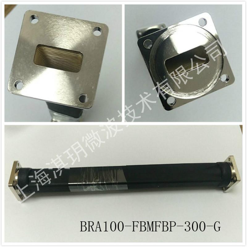 BRA100-FBMFBP-300-G.jpg