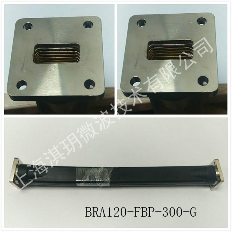 BRA120-FBP-300-G.jpg