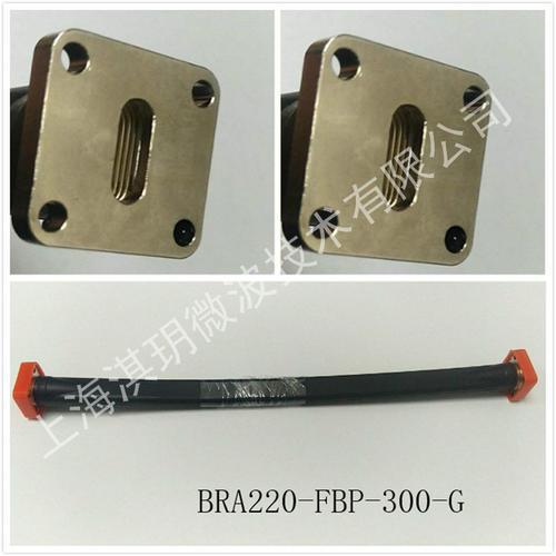BRA220