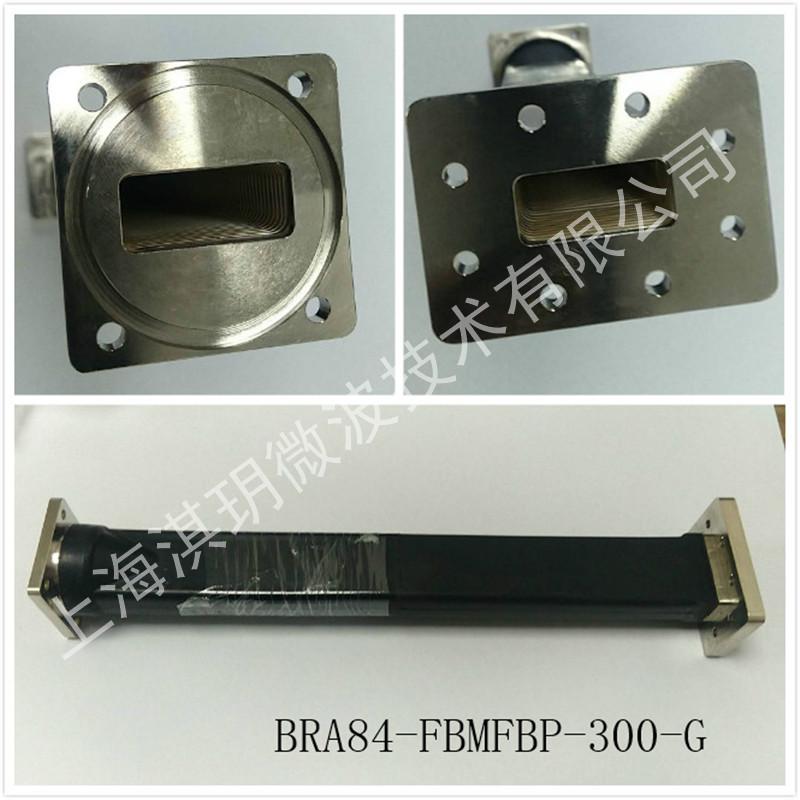 BRA84-FBMFBP-300-G.jpg