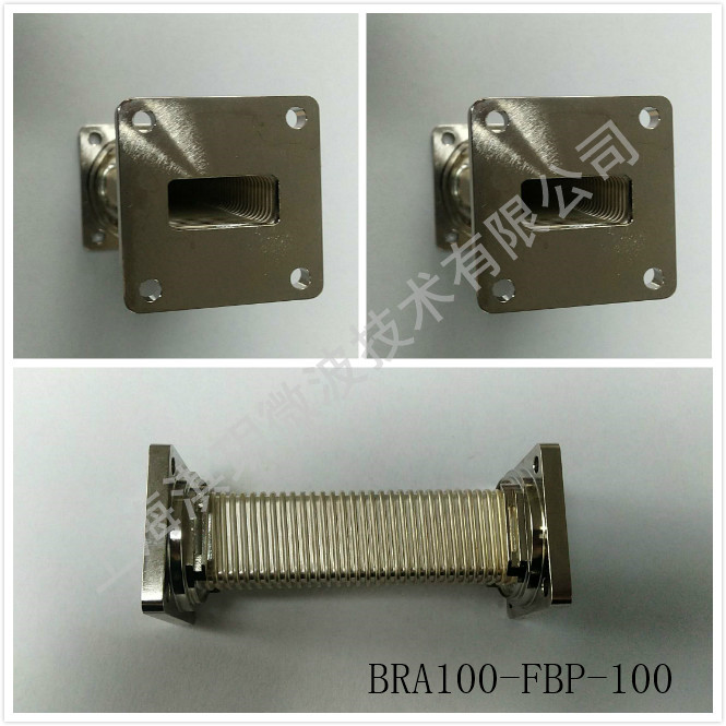 BRA100-FBP-100.jpg