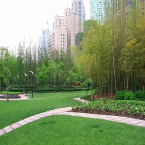 如何在公共绿地与绿篱进行鼠害防治?公共绿地灭鼠**方法