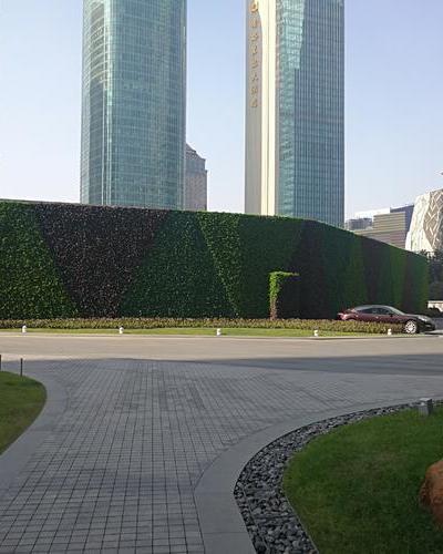 國金匯綠化墻