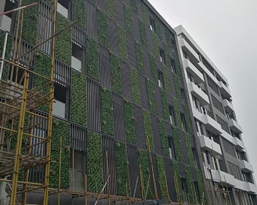 復旦復華創業源綠化墻