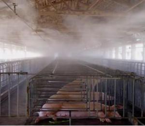 喷雾消毒除臭