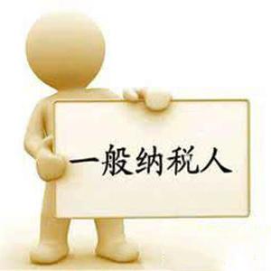 上海一般纳税人公司代理记账需要注意的几个问题