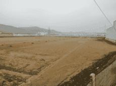 中科创集团携手李也文旅,合力打造定西土豆产业新启程