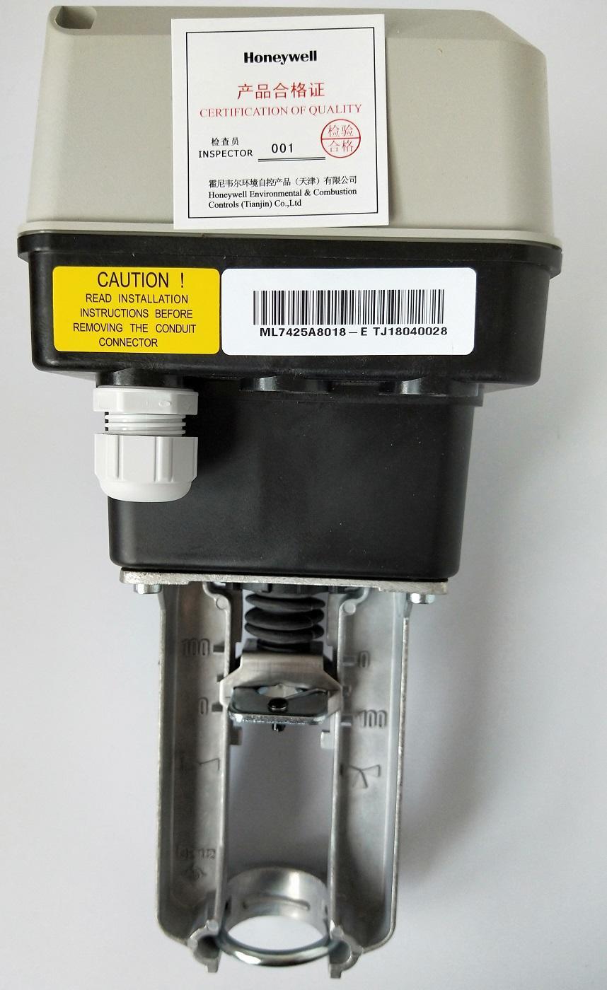 ML7425A8018-E-2019 (2).jpg
