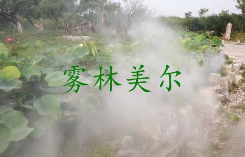 公园景观造雾