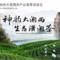 大湘西 潇湘茶 | 走进第十六届上海国际茶博会