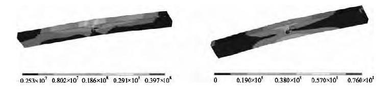 图5 第一主应力分布云图、等效应力分布云图