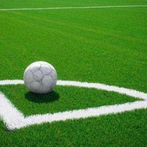 苏州运西中学人造草坪足球场