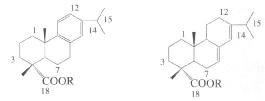 图1 松香树脂主要成分的结构式