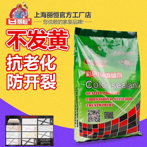 丽恒袋装填缝剂(通用T60白)
