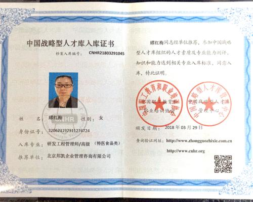 中国战略型人才库入库证书