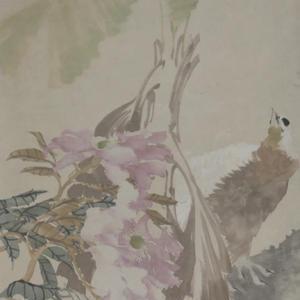 《潘岚花鸟画》