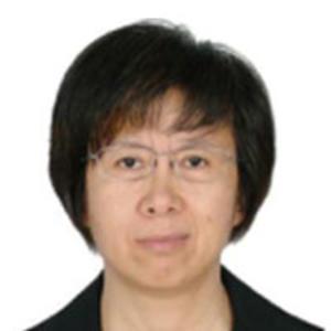 Meixu Gao