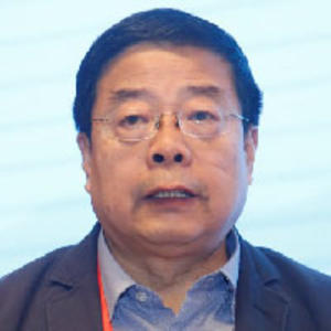Tie Wang