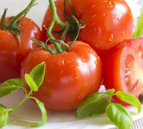 西红柿烂了不要扔,原来它还有这些功效……