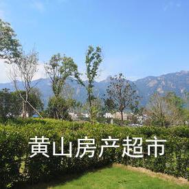 榮盛康旅·九華山溫泉養生度假區,精裝公寓