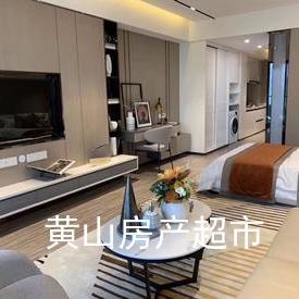 綠地太平湖,精裝湖景公寓,60平一室一廳度假公寓