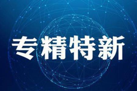 """喜讯!泰缘荣获上海市""""专精特新?#20445;?#19987;业与创新齐头并进"""