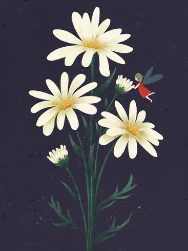 花卉插画 Flower illustrations__I0401004QTW