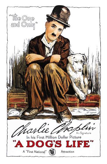 狗的生活 A Dog's Life (1918)
