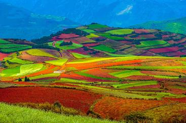 中国 云南 东川红土地 Dongchuan Red Land Yunnan China