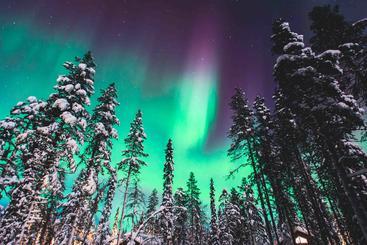 挪威 极光 Aurora Norwegian