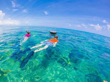 美国 佛罗里达海洋保护区 Florida Marine Sanctuary USA