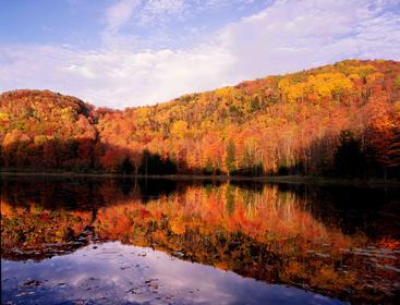 秋天 Autumn