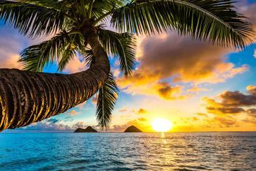 美国 夏威夷 Hawaiian USA