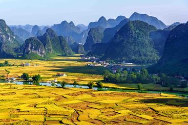 越南 梯田 Terraces Vietnam