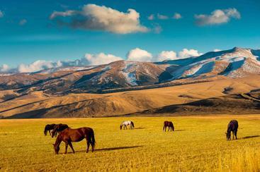 哈萨克斯坦 阿拉木图 Almaty Kazakhstan