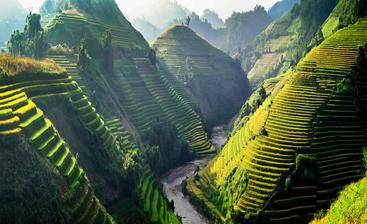 越南 梯田 Terraces Vietnam