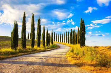 意大利 托斯卡纳 Tuscany Italy
