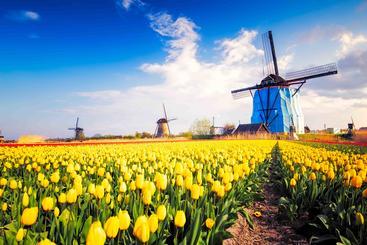 荷兰 风车 Dutch Windmills Netherlands