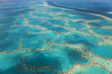 澳大利亚 大堡礁 Great Barrier Reef Australia