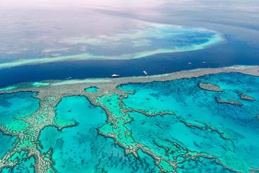 澳大利亚 大堡礁 Great Barrier Reef Australia
