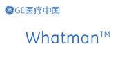 whatman/沃特曼
