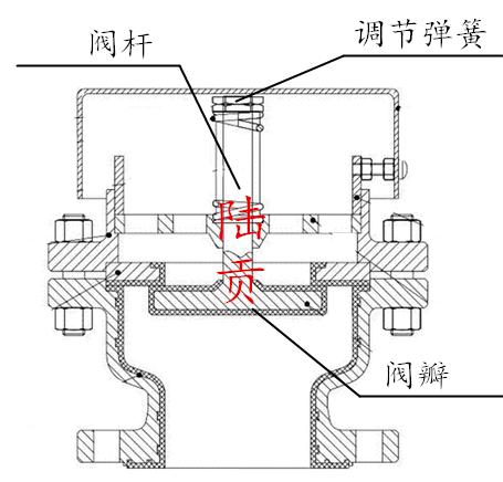 真空负压安全阀结构图