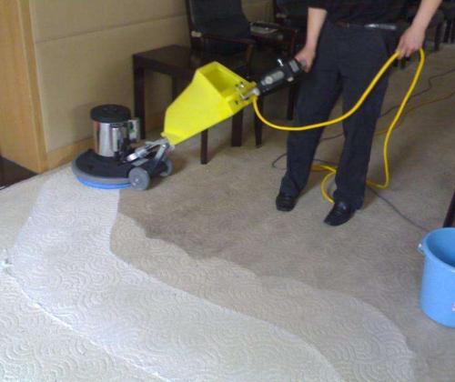 地毯清洗-专注地毯清洗